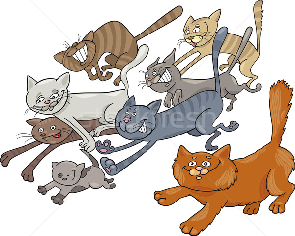 Running cats Stock photo © izakowski