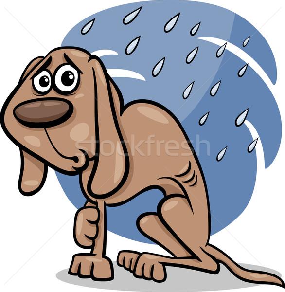 Evsiz köpek karikatür örnek yoksul yağmur Stok fotoğraf © izakowski