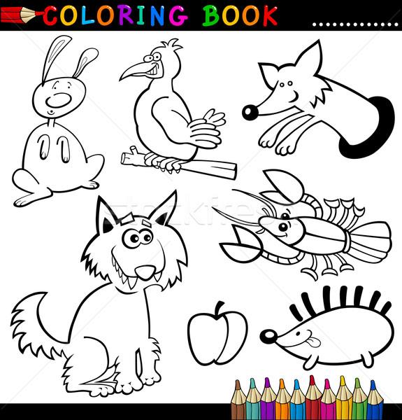 Hayvanlar Boyama Kitabi Sayfa Karikatur Ornek Komik