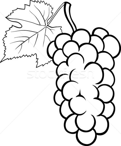 üzüm örnek Boyama Kitabı Siyah Beyaz Karikatür Vektör