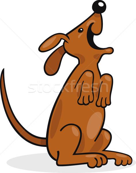 Happy barking dog Stock photo © izakowski