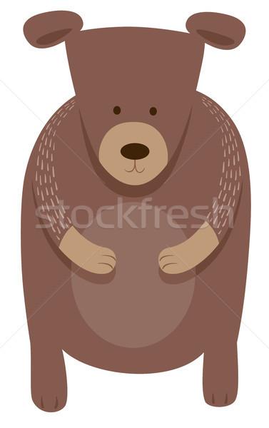 cute bear cartoon animal character Stock photo © izakowski