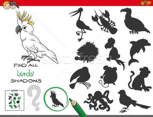 Oktatási árnyékok játék madarak betűk rajz Stock fotó © izakowski