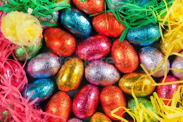 Renkli paskalya yumurtası çim kabarık civciv oyuncak Stok fotoğraf © jackethead