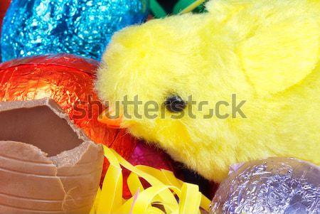 Paskalya civciv yumurta oyuncak yeme Stok fotoğraf © jackethead