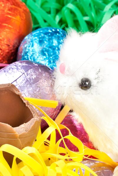 Witte pluizig bunny chocolade ei Stockfoto © jackethead
