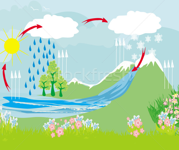 cycle water in nature environment  Stock photo © JackyBrown