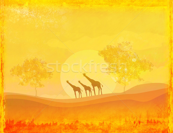 grunge background with African fauna and flora  Stock photo © JackyBrown