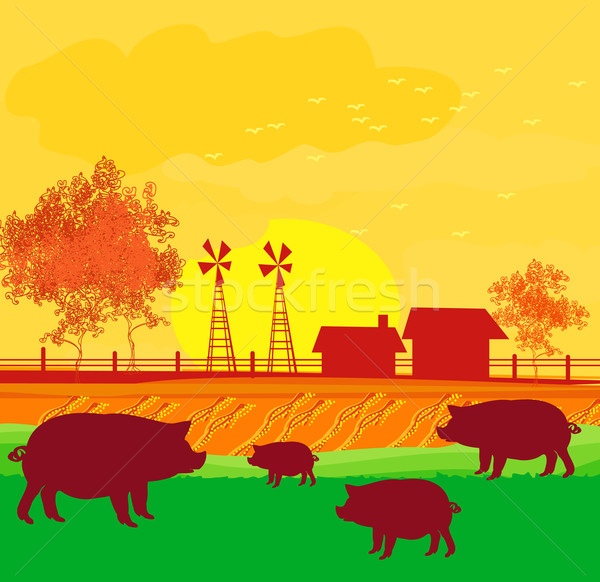 Herd of pigs on nature background Stock photo © JackyBrown