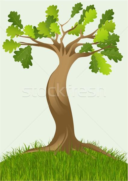 漫画 ベクトル ツリー 実例 木材 森林 ストックフォト © jagoda