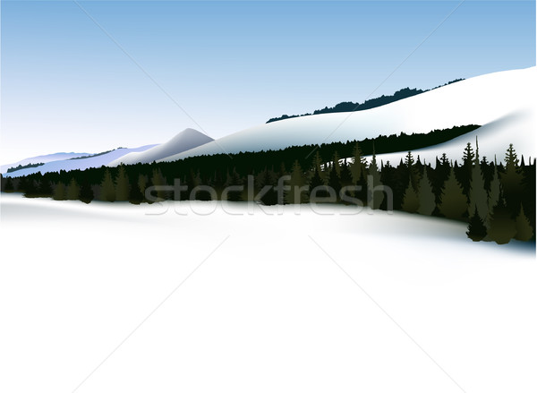 冬 山 風景 空 スポーツ 自然 ストックフォト © jagoda