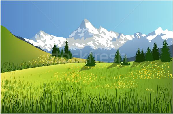 Berg landschap boom voorjaar gras bos Stockfoto © jagoda
