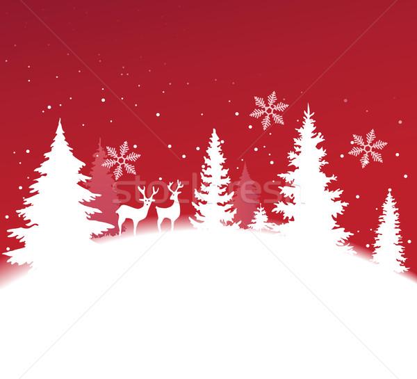 Natal inverno paisagem céu feliz floresta Foto stock © jagoda