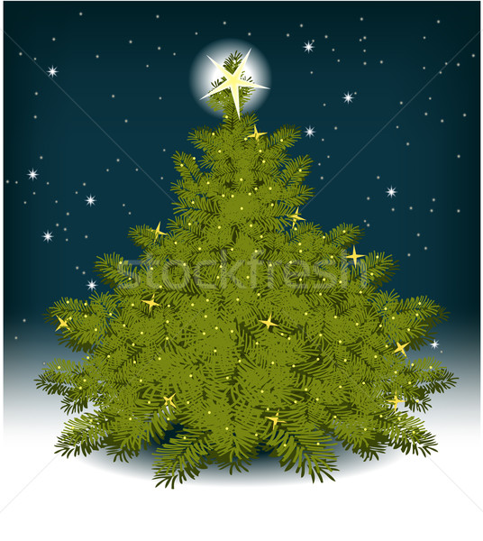 Christmas tree Stock photo © jagoda