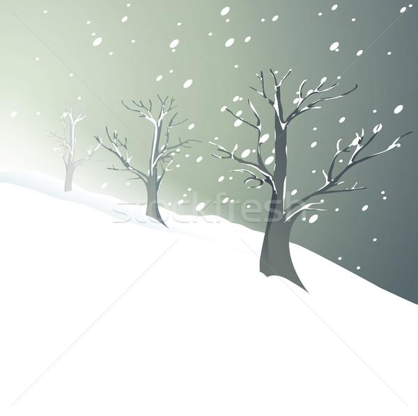 Biały christmas drzew zimą niebo drzewo Zdjęcia stock © jagoda