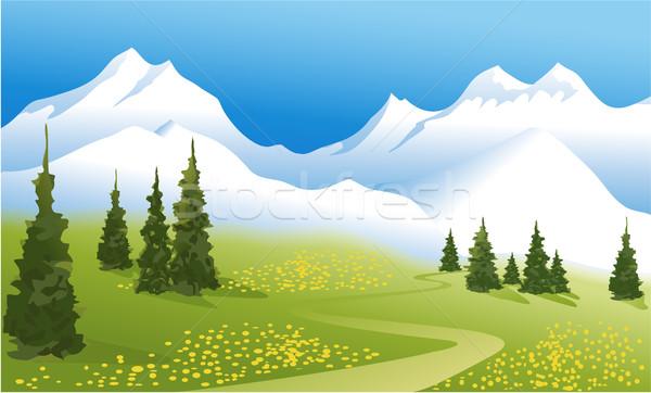 Górskich krajobraz zielone łące wysoki Zdjęcia stock © jagoda