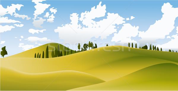 Zielone kraju krajobraz wektora charakter drzewo Zdjęcia stock © jagoda