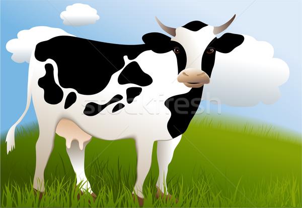 Vaca preto e branco projeto arte grupo Foto stock © jagoda