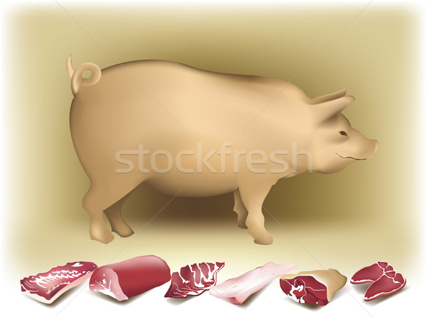 Pig and pork Stock photo © jagoda