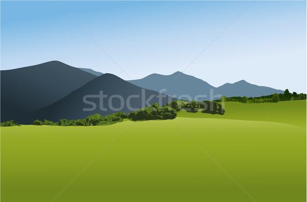 Dağlar doğa vektör bahar orman Stok fotoğraf © jagoda
