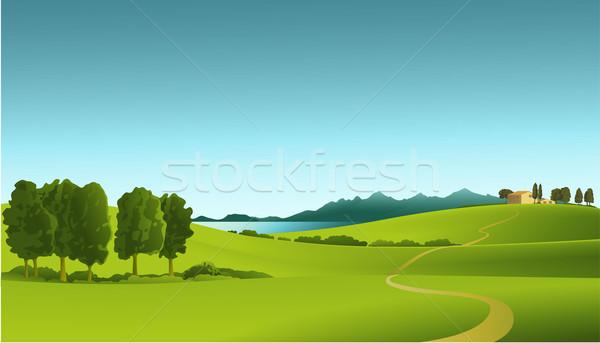 Verde hills casa verão campo Foto stock © jagoda