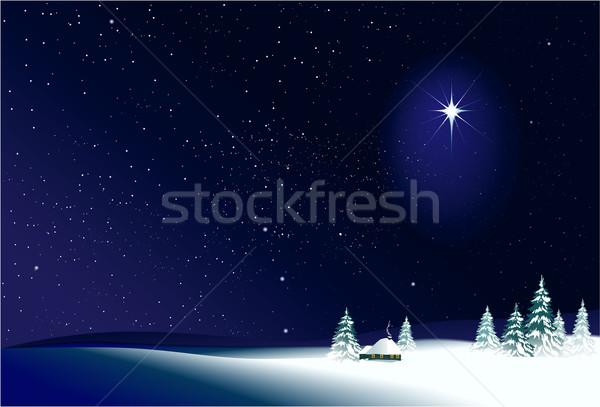 Noel sahne kış kırsal gece manzara Stok fotoğraf © jagoda