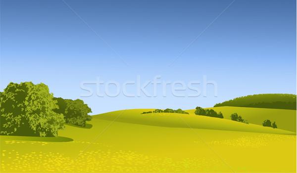 Vidéki táj zöld domb tavasz természet háttér Stock fotó © jagoda