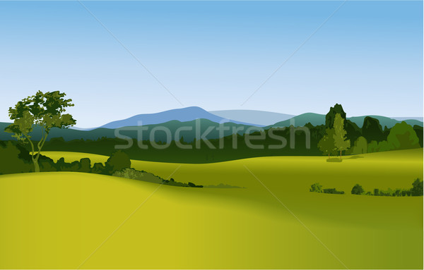 Rural landscape Stock photo © jagoda