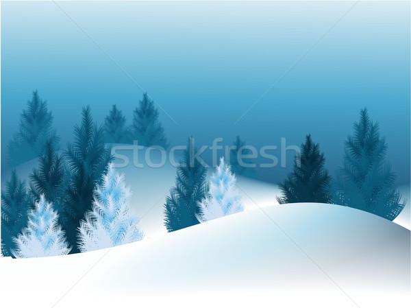 クリスマス 木 冬 森林 1泊 ツリー ストックフォト © jagoda