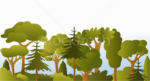 Green forest Stock photo © jagoda