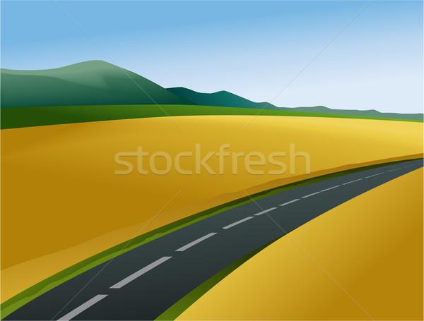 Estrada país paisagem amarelo campos Foto stock © jagoda