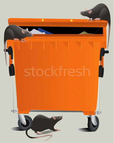 Rats in the rubbish dump Stock photo © jagoda