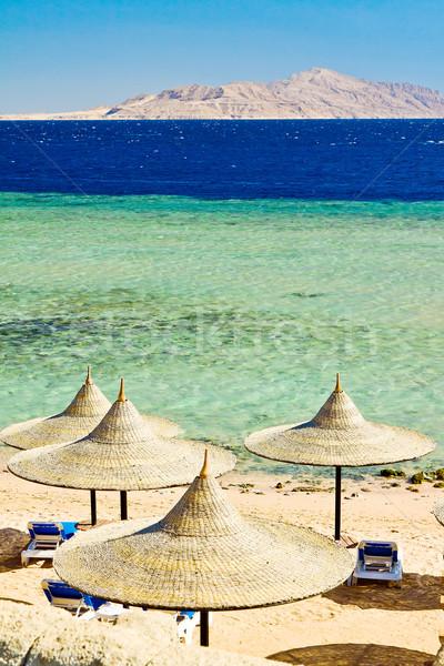 空っぽ ビーチ 黄色 紅海 海 青 ストックフォト © jagston