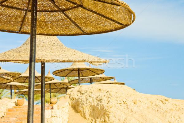 ビーチ 紅海 海 青 旅行 砂 ストックフォト © jagston