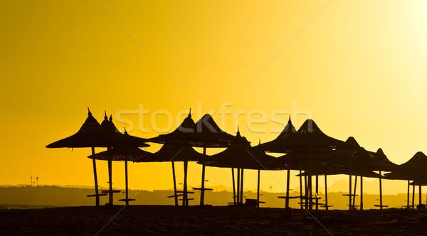 シルエット 日没 エジプト ストックフォト © jagston