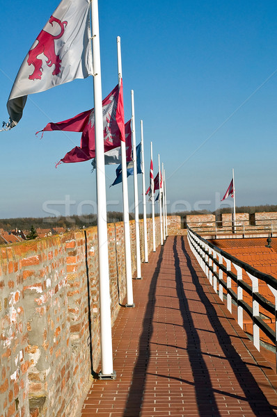 Afişler kale Macaristan şehir duvar mavi Stok fotoğraf © jakatics