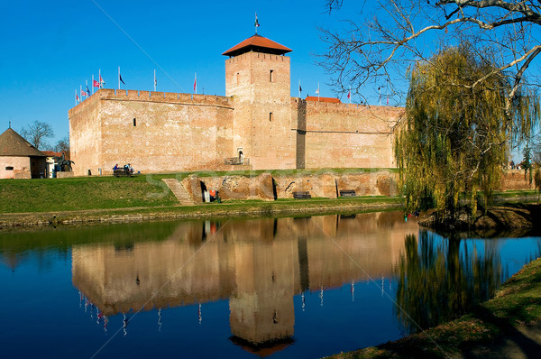 Castle of city Gyula in Hungary Stock photo © jakatics