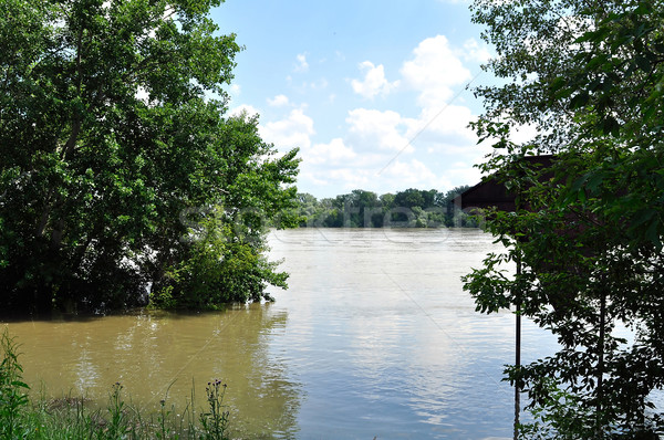 Flood on the river Danube Stock photo © jakatics