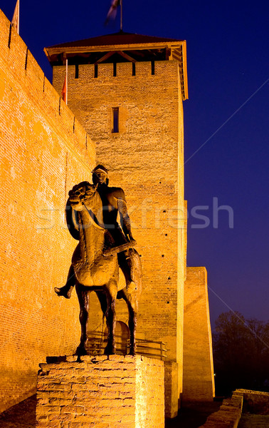 Sculpture of a knight before the castle in Gyula at twilight Stock photo © jakatics