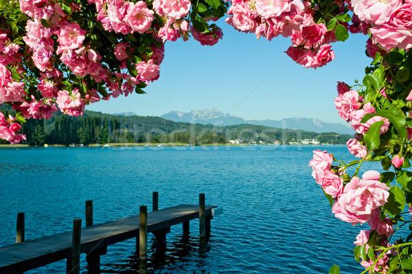 Tó üdvözlet égbolt rózsa erdő sport Stock fotó © jakatics