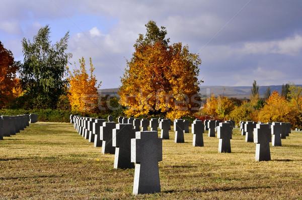 Military cemetery in Budaors Stock photo © jakatics