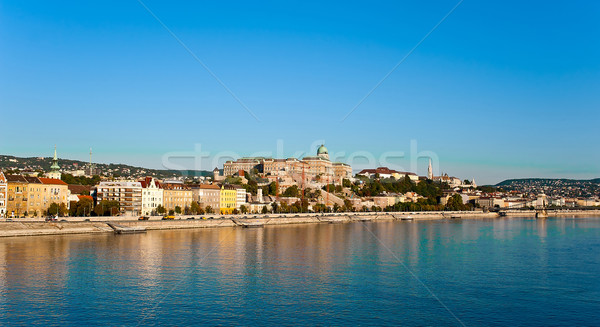 View of Buda Castle Stock photo © jakatics