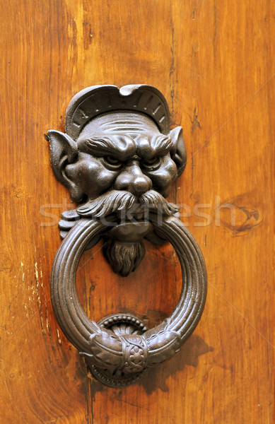Door knocker Stock photo © jakatics