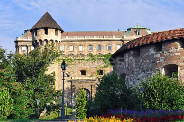 Buda castle Stock photo © jakatics