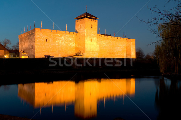 Stock photo: The castle of Gyula in twilight