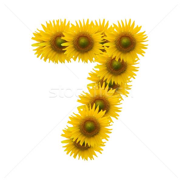 Blume Alphabet isoliert weiß Natur Zeichen Stock foto © jakgree_inkliang