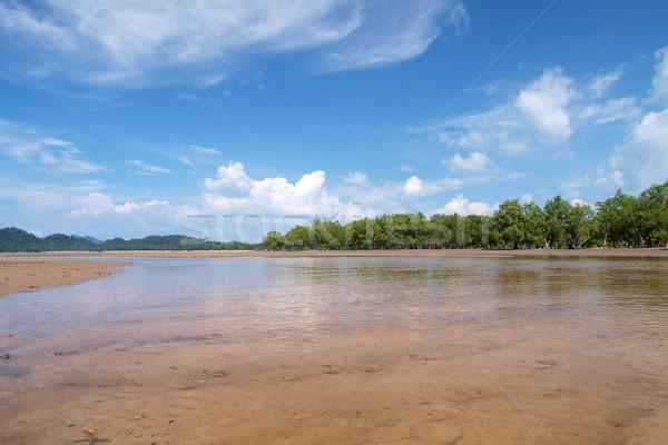 Tropischen Strand Baum südlich Thailand Strand Himmel Stock foto © jakgree_inkliang