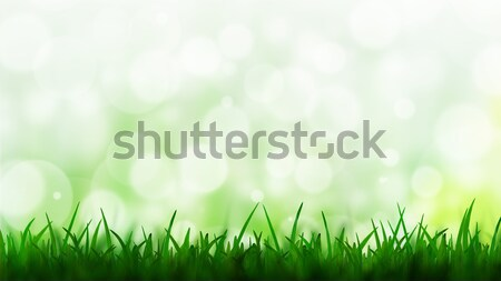 Natürlichen grünen bokeh Gras Natur Design Stock foto © jakgree_inkliang