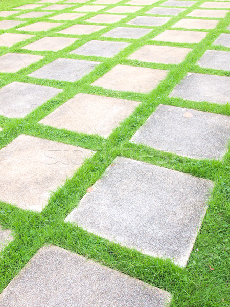 Schönen Gras Fliesen Fuß Weg Garten Stock foto © jakgree_inkliang