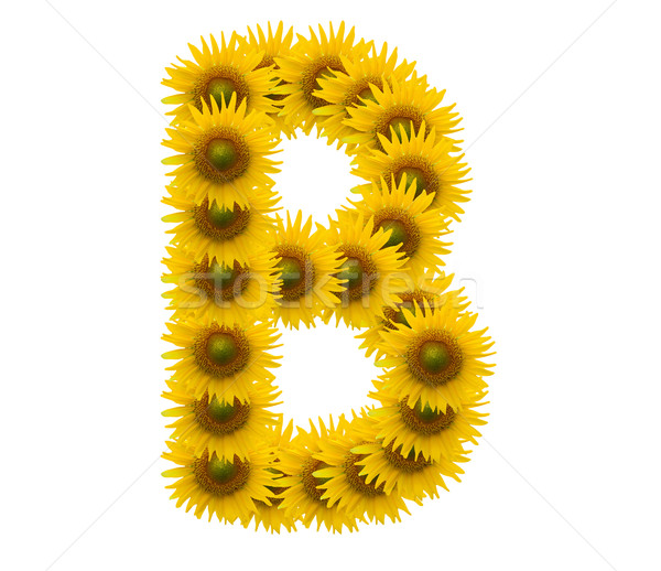 alphabet B, sunflower isolated on white background Stock photo © jakgree_inkliang